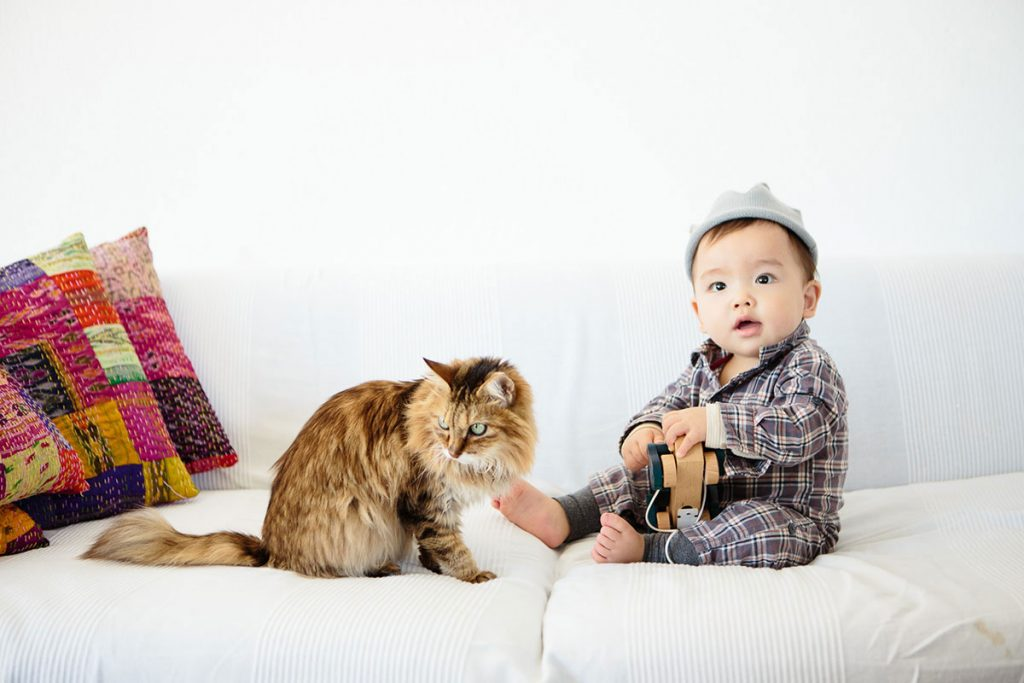 猫とこども