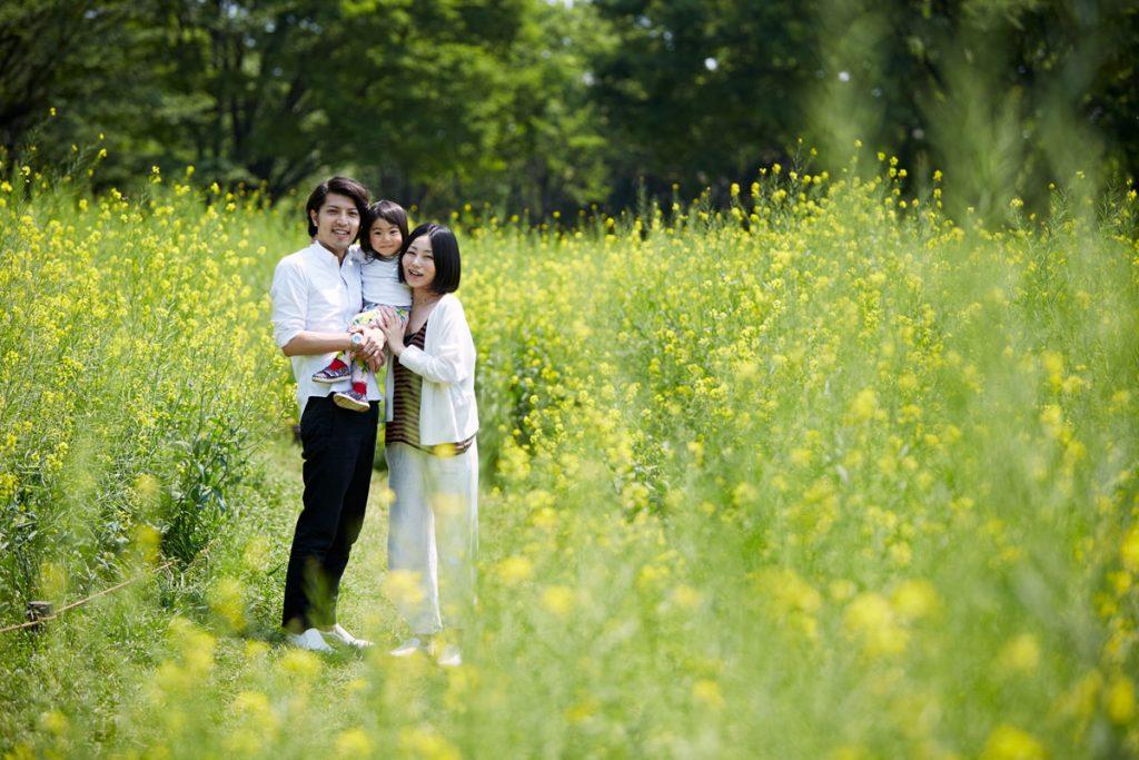 菜の花畑の家族1