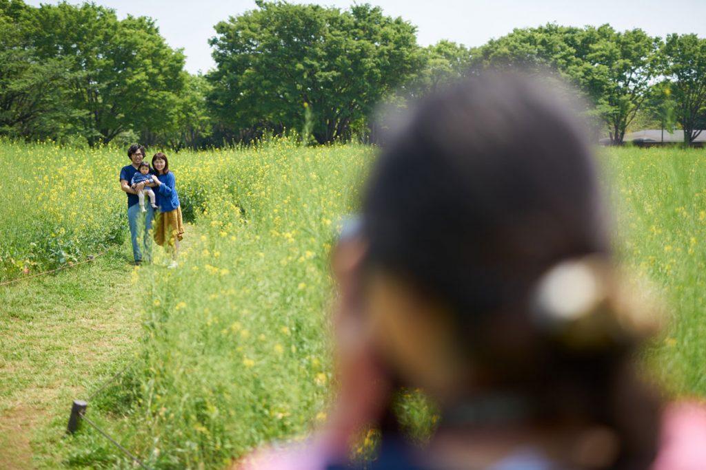 菜の花畑の家族を撮影する女性カメラマン